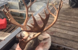 northeredgeoutfitters_oct2018_22